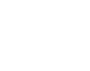 Logo Traveltec